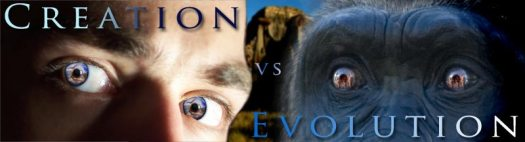 Ceration-vs-Evolution