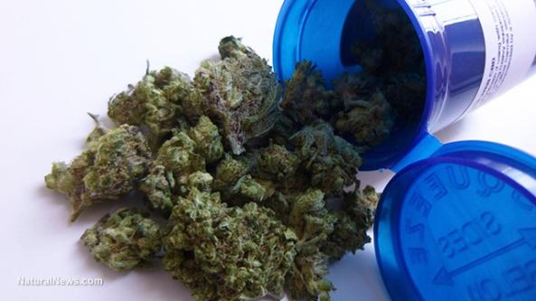 prescription-legal-weed-pot-marijuana