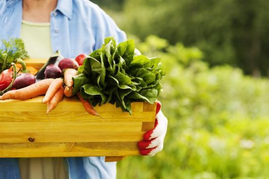 senior-woman-holding-box-vegetables