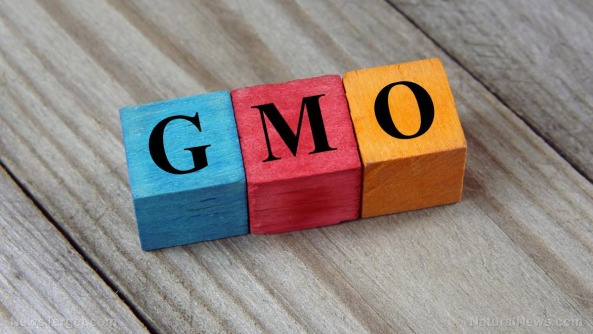 gmo-block-letters