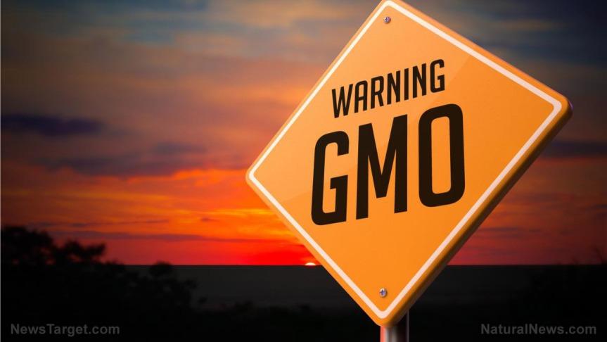 gmo-warning-sign-sunset