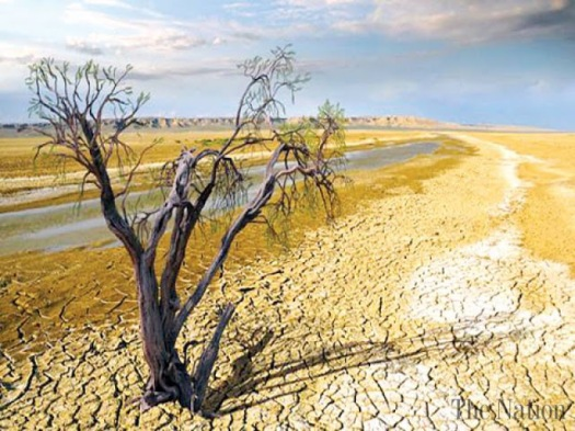climate-change-affects-nearly-all-life-on-earth-1478894927-2853