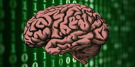human-mind-internet-800x400