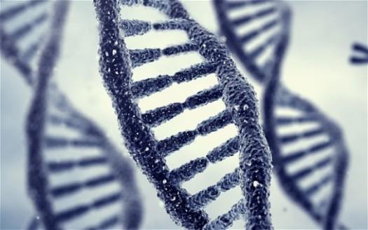 epigenetics-e1480853396368