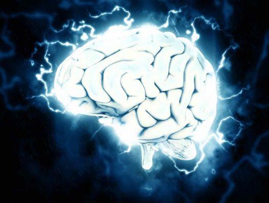 brain-1845962-1-696x527