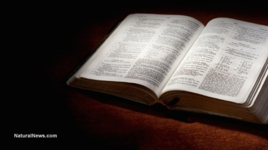 book-open-study-reading-text-bible