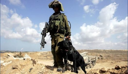 idf-gaza-border-689x400