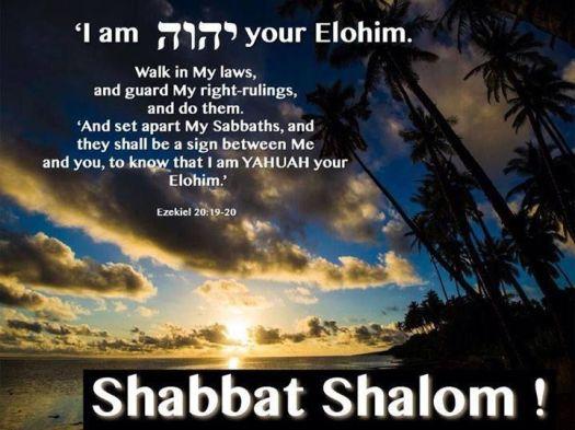 892b918f12252a43aeb616e60295342a-jewish-quotes-shabbat-shalom