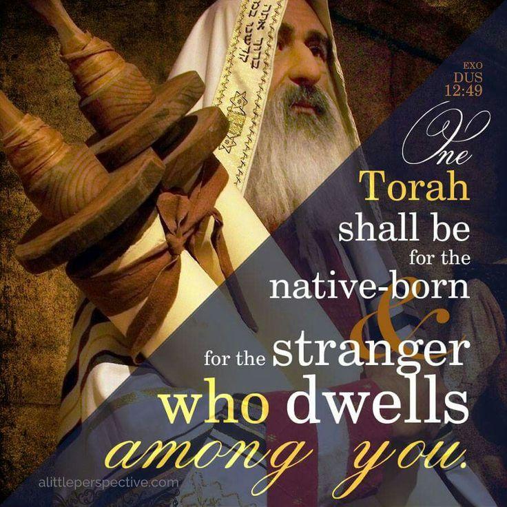 dcec7145b8ae0ac7c94c0b633d622d17-scripture-pictures-scripture-quotes