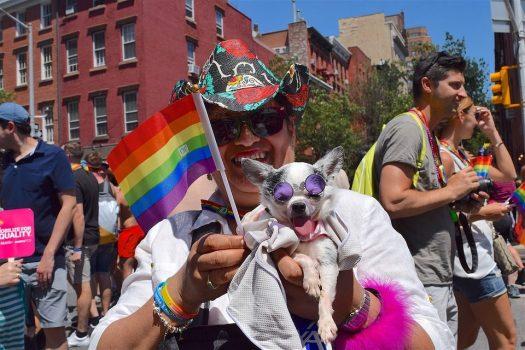 gay-pride-2446420_960_720-960x640