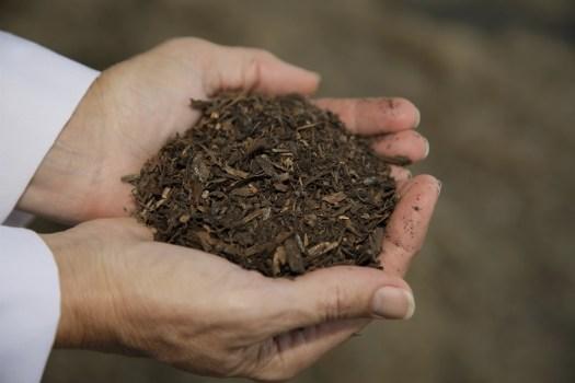 181221-recompose-compost-mn-1240_28d9822348696ec9061eb548d47496df.fit-2000w
