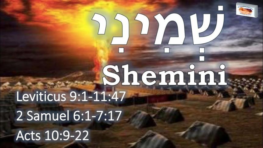 TORAHSCOPE – Shemini – Eighth – 30 Mar2019