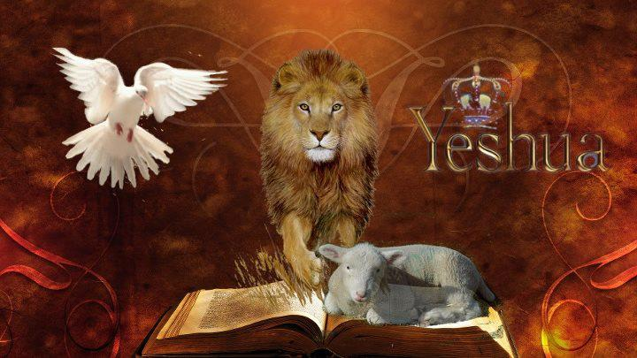 Your Daily Readings – Verse of the Day – Exodus 20:13 – The Scriptures by Institute For Scripture Research – 2009 Edition – April 19,2020