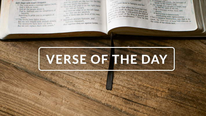 Your Daily Readings – Verse of the Day – John 3:16 – January 1, 2020