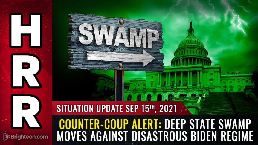 COUNTER-COUP: Deep state swamp moves against disastrous Biden regime as swamp creatures realize the whole country could burn down if they don't stop themadness
