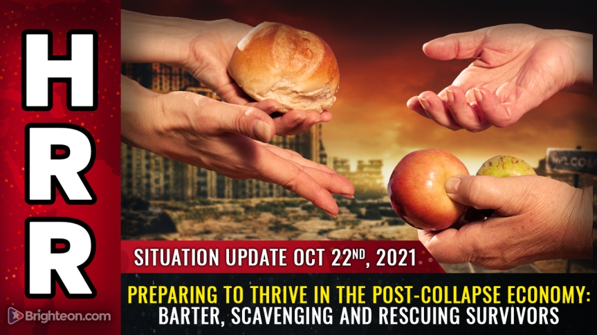 Preparing to THRIVE in the post-collapse economy: Scavenging, barter, off-grid food production and rescuingsurvivors